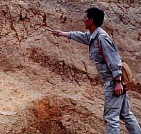 地質構造の解明イメージ