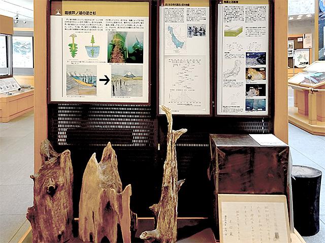 芦ノ湖の逆さ杉