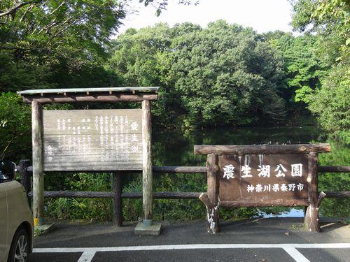 震生湖 に対する画像結果